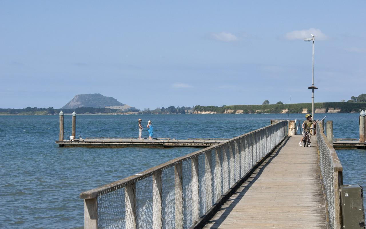 2 Gumtree Lane, Omokoroa, Western Bay Of Plenty